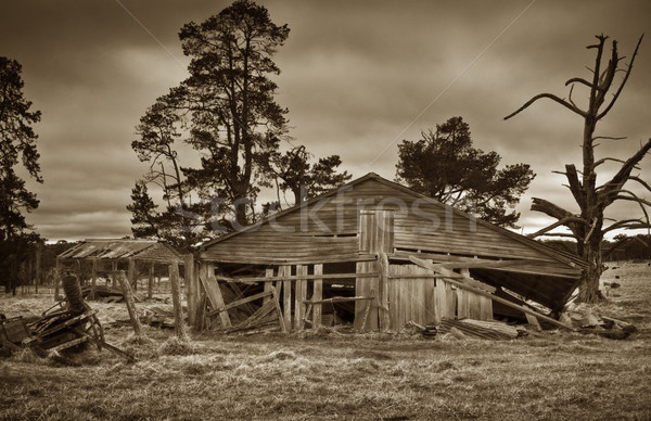 old farm building Stock photo © clearviewstock
