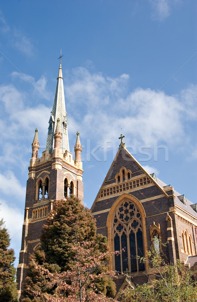 the cathedral Stock photo © clearviewstock