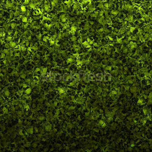 hedge Stock photo © clearviewstock