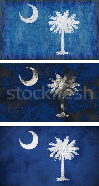 Vlag South Carolina groot afbeelding achtergrond weefsel Stockfoto © clearviewstock
