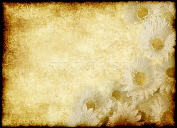 Flor pergaminho pergaminho velho papel bom Foto stock © clearviewstock