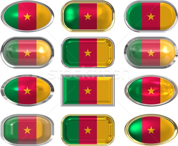 Twaalf knoppen vlag Kameroen Stockfoto © clearviewstock