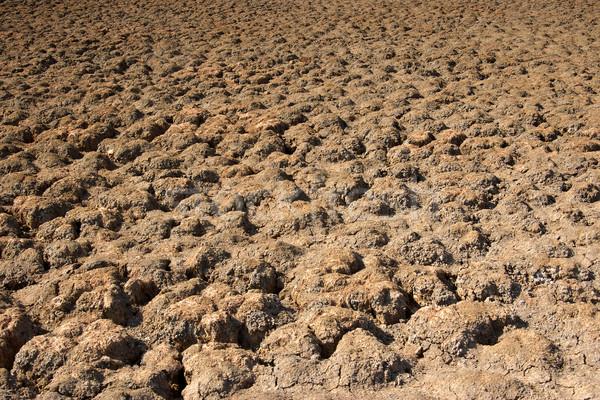 Asciugare lago letto siccità foto Foto d'archivio © clearviewstock