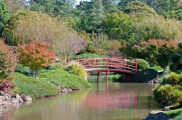 beautiful japanese garden Stock photo © clearviewstock