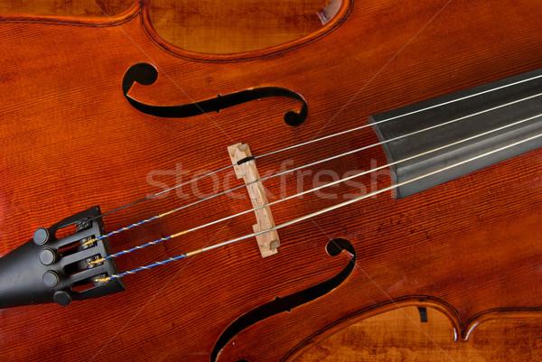 Violoncelo violino imagem mão madeira Foto stock © clearviewstock