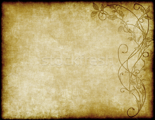 floral paper or parchment Stock photo © clearviewstock