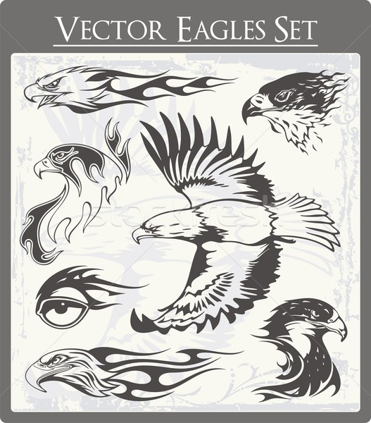 Vecteur flaming aigle illustrations magnifique Photo stock © clipart_design