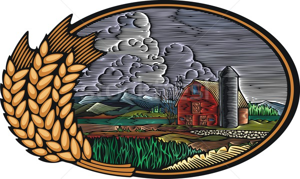 Vector illustration of an organic farm. Sustainable living theme, done in retro woodcut style. Stock photo © clipart_design
