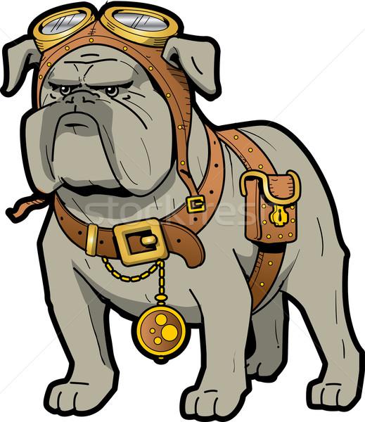 Steampunk bulldog hideg szívós védőszemüveg zsebóra Stock fotó © ClipArtMascots