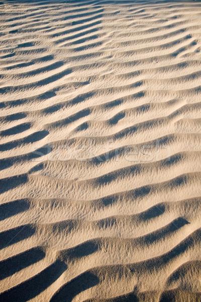 Areia textura sombra deserto verão tempo Foto stock © cmcderm1