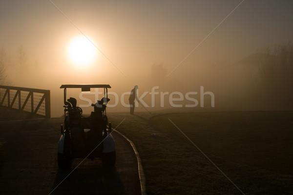 Golfer resort golfbaan actie gras man Stockfoto © cmcderm1