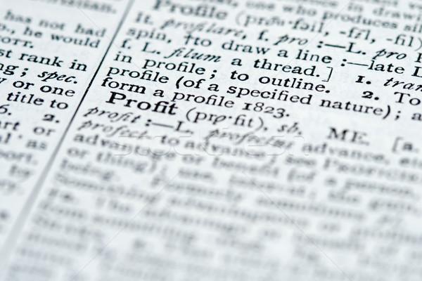 Dizionario definizione profitto business parola ortografia Foto d'archivio © cmcderm1