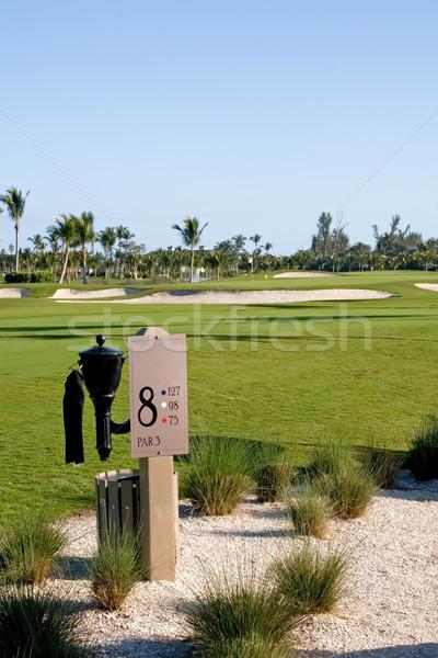 Campo de golfe recorrer jogadores árvore grama golfe Foto stock © cmcderm1