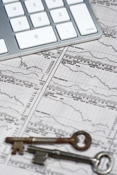 Business financieren grafieken werken computer papier Stockfoto © cmcderm1