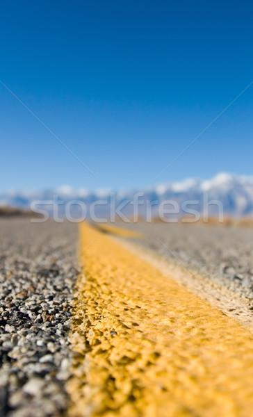 Desert Road Stock photo © cmcderm1