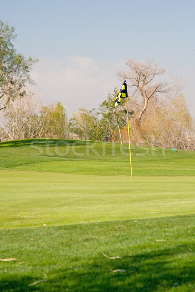 Golfer golfbaan actie ochtend gras man Stockfoto © cmcderm1