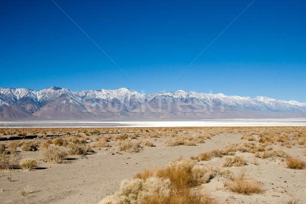 Dood vallei park zout zon Stockfoto © cmcderm1