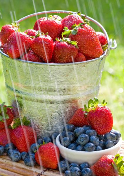 Fraîches fraises pluie seau bleuets matin Photo stock © cmcderm1