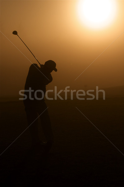 Golden Golfer Stock photo © cmcderm1
