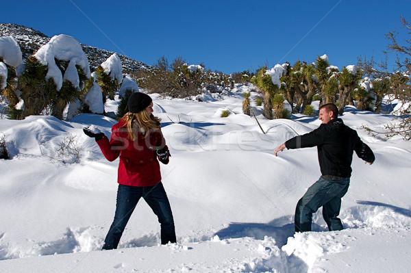 Tél csodaország fiatalok élvezi friss hó Stock fotó © cmcderm1