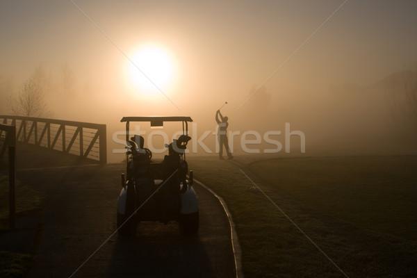 Golfer Stock photo © cmcderm1