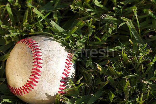 Baseball macro gebruikt Stockfoto © cmcderm1