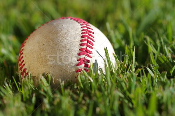 Beysbol makro görmek kullanılmış Stok fotoğraf © cmcderm1
