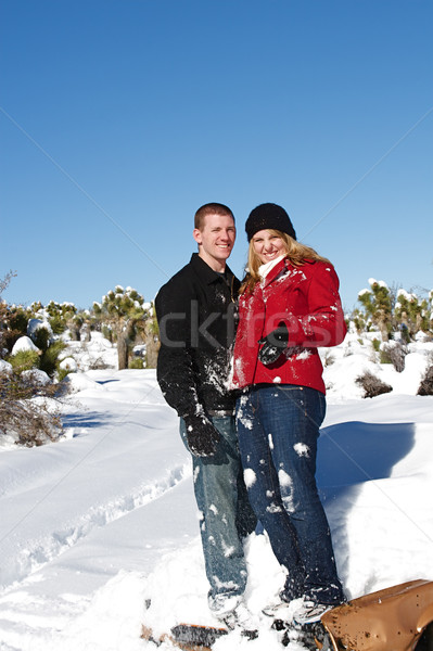 Invierno mundo maravilloso jóvenes disfrutar frescos nieve Foto stock © cmcderm1