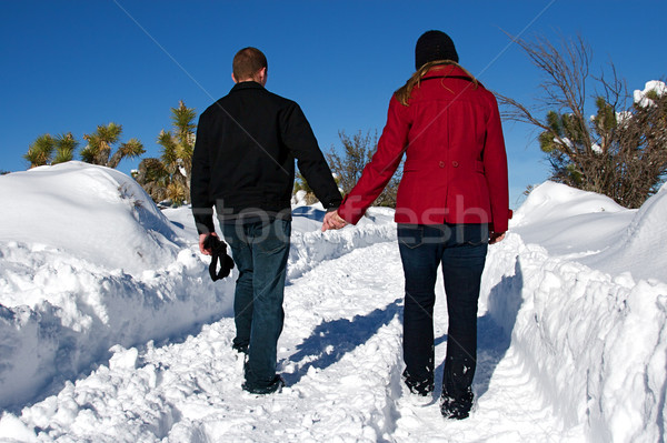Winter Wonderland Stock photo © cmcderm1
