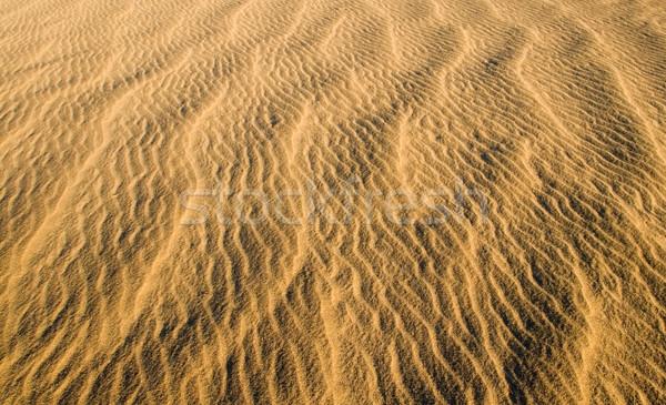 Sand Dunes Stock photo © cmcderm1