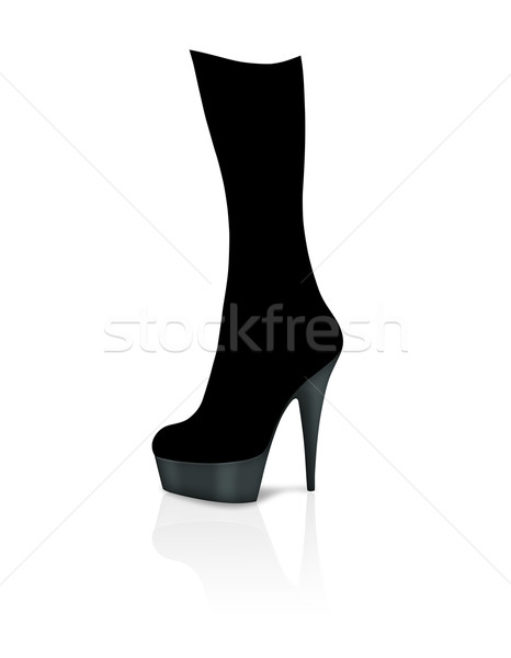 Stiletto Boot Stock photo © cnapsys