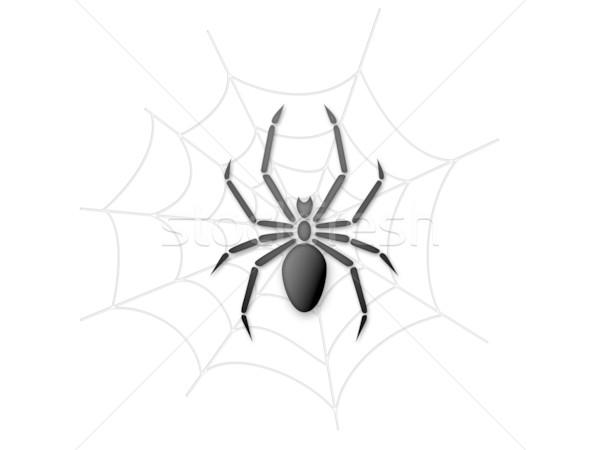 クモの巣 実例 芸術 ウェブ 恐怖 怖い ストックフォト © cnapsys