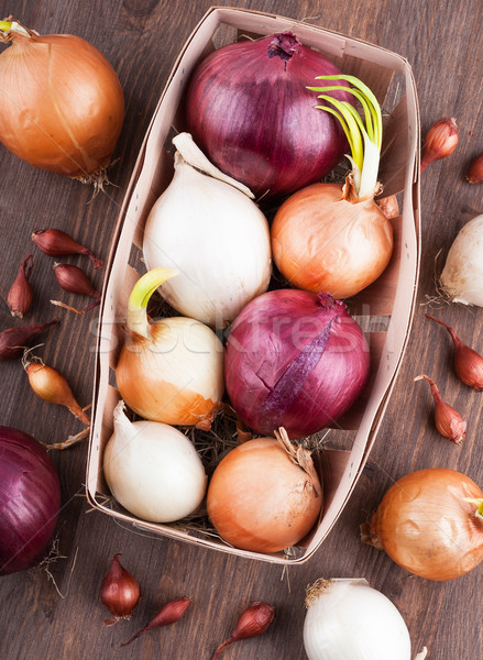 Different varieties of onions Stock photo © Coffeechocolates