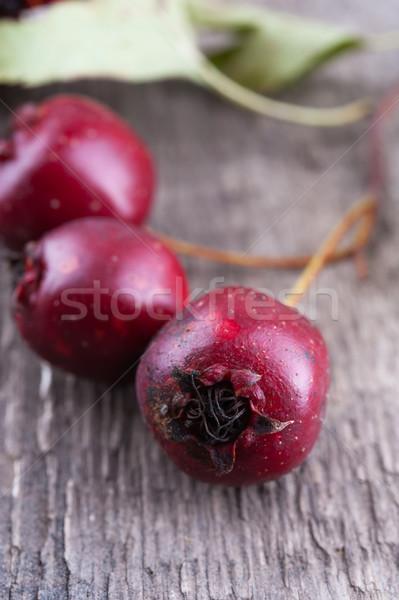Velho comida natureza Foto stock © Coffeechocolates