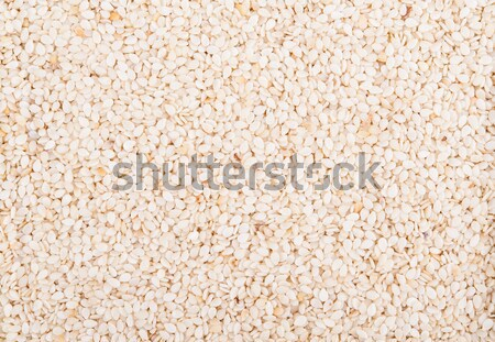 кунжут кунжут высушите семян подробность Сток-фото © Coffeechocolates