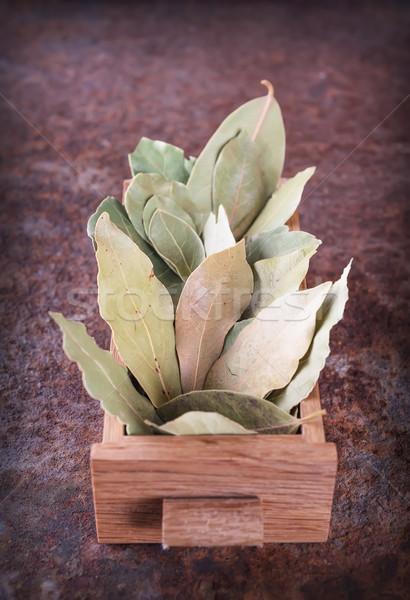 Grupo caixa folha verde Foto stock © Coffeechocolates