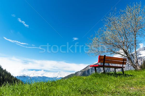 View of the Bernese Alps from the village Torrentalp, Switzerland Stock photo © Coffeechocolates