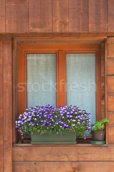 Alpine pencere tipik dekore edilmiş çiçekler bahar Stok fotoğraf © Coffeechocolates