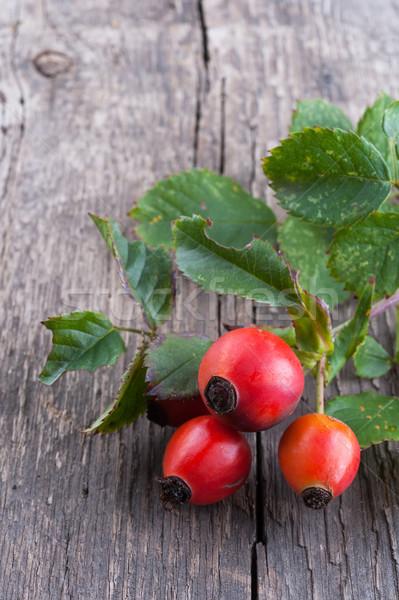 Rosehip berries Stock photo © Coffeechocolates