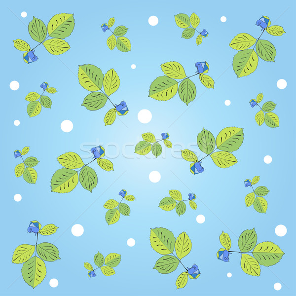 Rose pattern, vector Stock photo © Coffeechocolates