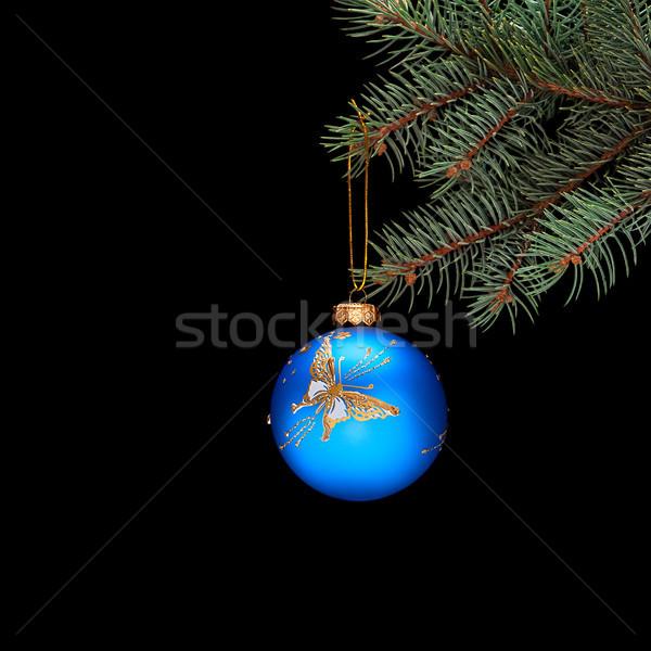 Niebieski christmas piłka wystroić oddziału odizolowany Zdjęcia stock © Coffeechocolates