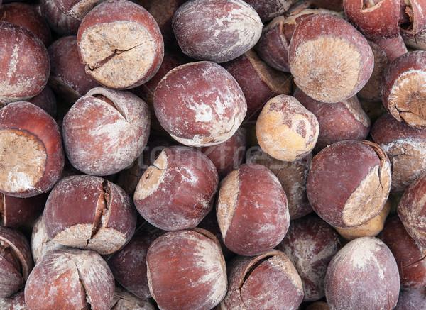 Hazel nut brown background Stock photo © Coffeechocolates