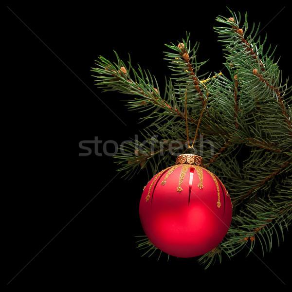 Vermelho natal bola enfeitar ramo isolado Foto stock © Coffeechocolates