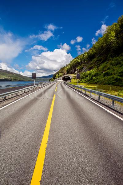 Road in Norway Stock photo © cookelma