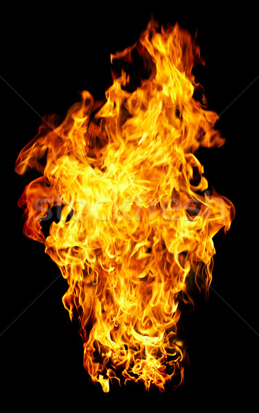 Fire photo on a black background  Stock photo © cookelma