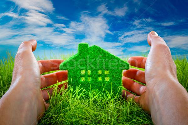 Eco huis groen gras beschermd menselijke handen Stockfoto © cookelma