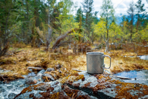 Travel titanium cup Beautiful Nature Norway. Stock photo © cookelma