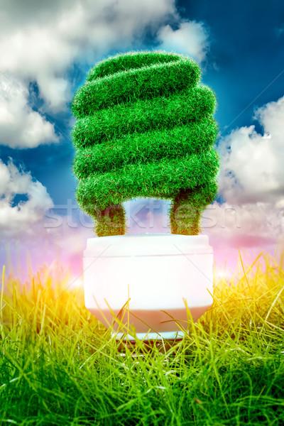 Concept Eco light bulb Stock photo © cookelma