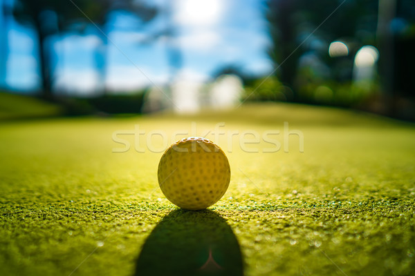 Mini golf jaune balle herbe verte coucher du soleil Photo stock © cookelma