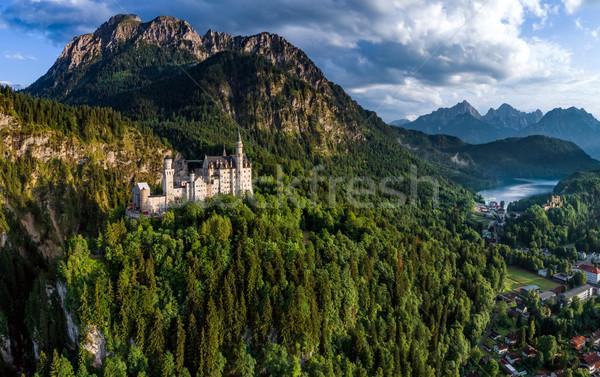 Castello di Neuschwanstein alpi Germania foresta montagna estate Foto d'archivio © cookelma